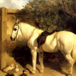 Budd family Hampshire, Yeoman farmer on horse such as this